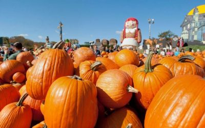October is the Perfect Festival Month
